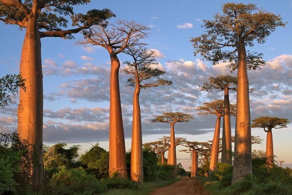 Madagaskar – fot. Polka Travel (1)