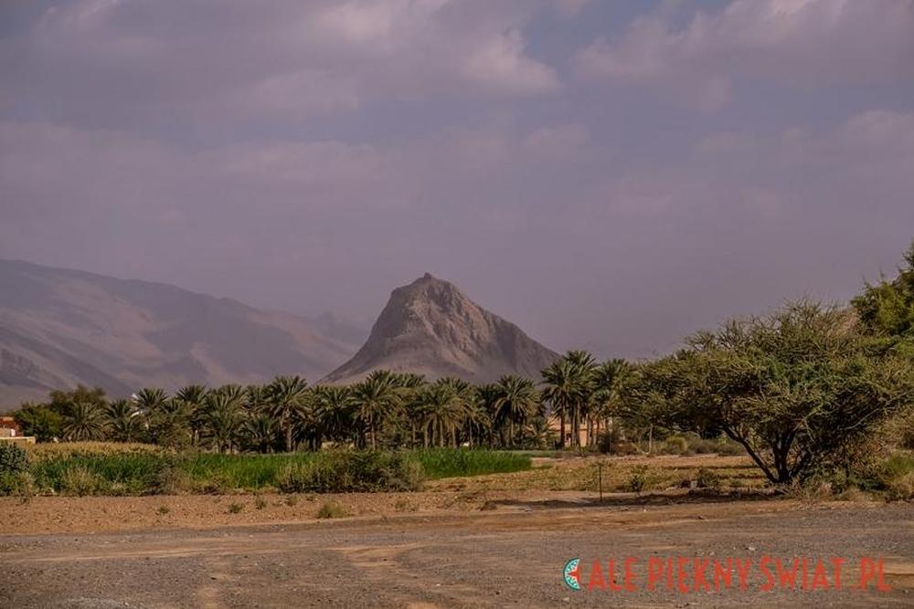 Oman – fot. z arch. Dorota Chojnowska (5)